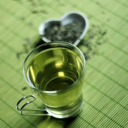 Катехины зеленого чая