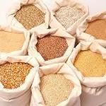 Зерновые продукты: польза или вред