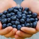 Полезная экзотика - ягоды асаи