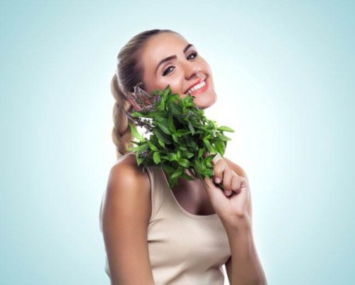 травы для снижения холестерина у женщин