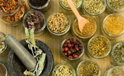 Типы лечебных трав