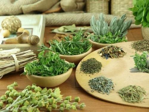Травы для снижения аппетита и похудения